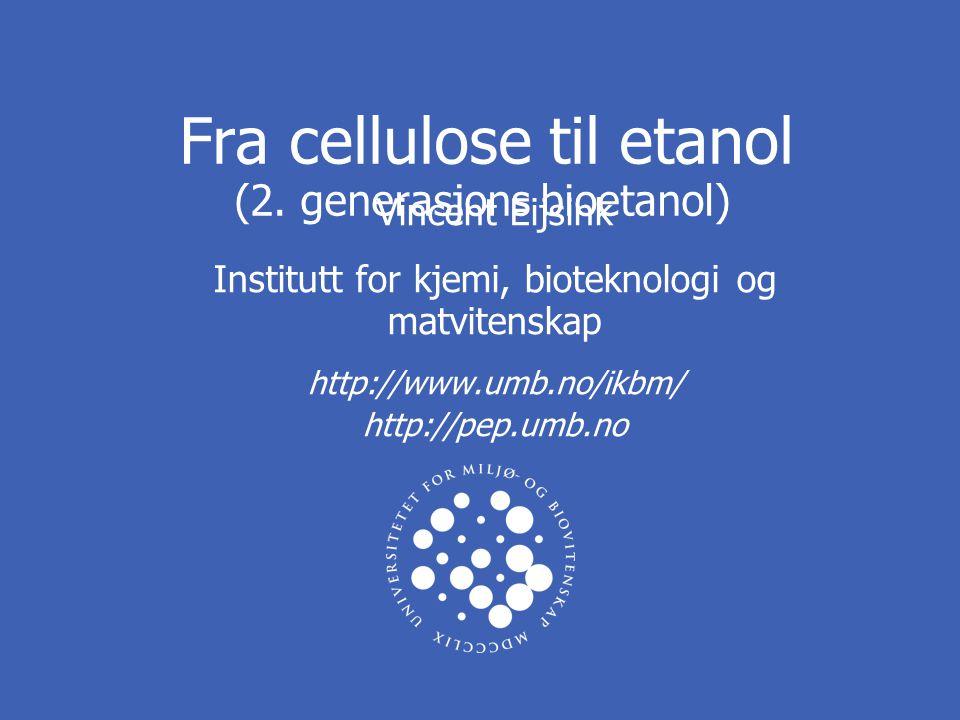 Institutt for kjemi, bioteknologi og matvitenskap 2 UNIVERSITETET FOR MILJØ- OG BIOVITENSKAP www.umb.no Førstegenerasjons bioetanol http://soilcrop.tamu.edu/ SukkerrørMais Sukker (-polymerer) Fermenterbare enkeltsukkere Sukker- polymerer Etanol Hydrolyse Fermentering (gjærsopp)