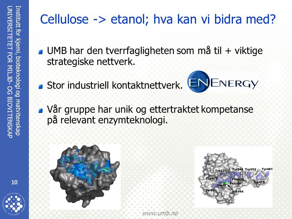 Institutt for kjemi, bioteknologi og matvitenskap 10 UNIVERSITETET FOR MILJØ- OG BIOVITENSKAP www.umb.no Cellulose -> etanol; hva kan vi bidra med? UM