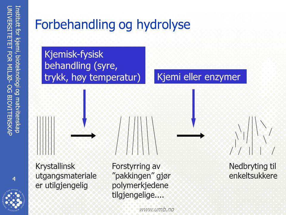 Institutt for kjemi, bioteknologi og matvitenskap 4 UNIVERSITETET FOR MILJØ- OG BIOVITENSKAP www.umb.no Forbehandling og hydrolyse Nedbryting til enke
