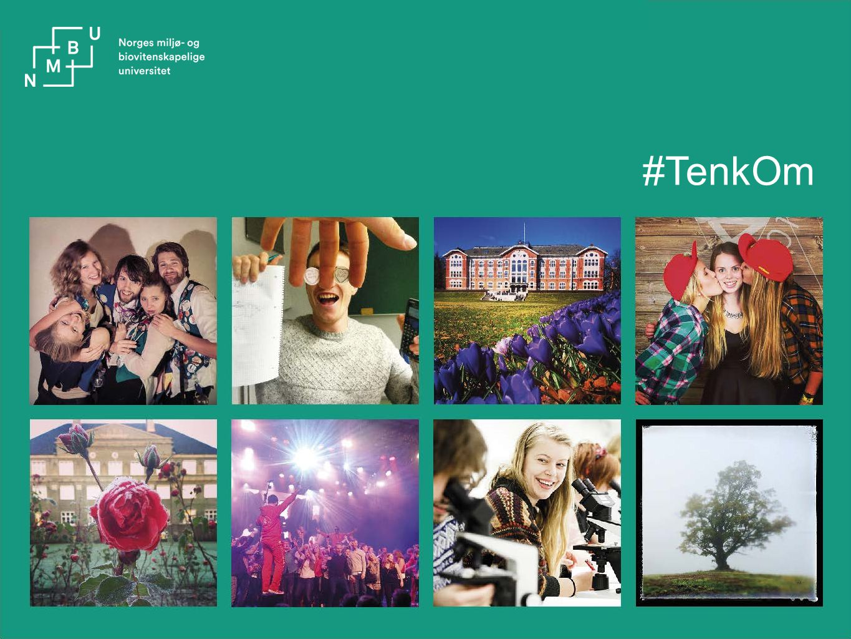 #TenkOm