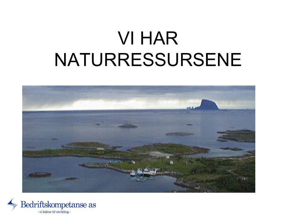 VI HAR NATURRESSURSENE