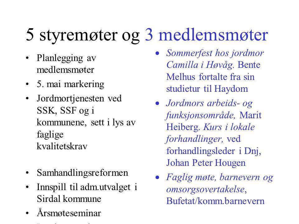 5 styremøter og 3 medlemsmøter Planlegging av medlemsmøter 5.