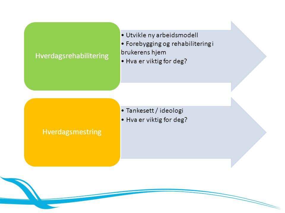 Modeller for hverdagsrehabilitering Modell 1 – eget team Et tverrfaglig team som har ansvar for planlegging, gjennomføring og evaluering av rehabiliteringsprosessen Modell 2 – integrert modell Ergo- og fysioterapeuter har ansvar for prosessen.