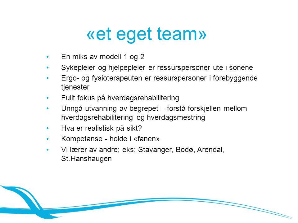 Prosjektgruppa Prosjektgruppa: Prosjektleder/ ergot100% Fysioterapeuter60% + 40% Ergoterapeut:60% Sykepleier:40% Hjelpepleier: 40% ----------------------------------------------------------------------- Teamleder hjemmetj.