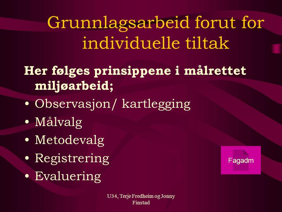 U34, Terje Fredheim og Jonny Finstad Grunnlagsarbeid forut for individuelle tiltak Her følges prinsippene i målrettet miljøarbeid; Observasjon/ kartle
