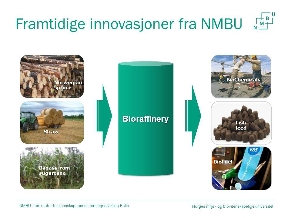 Framtidige innovasjoner fra NMBU BioFuel BioraffineryBioraffinery Fish feed Bagass from sugarcane Straw Norwegian spruce BioChemicals Norges miljø- og