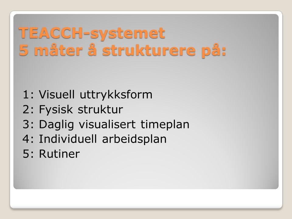 TEACCH-systemet 5 måter å strukturere på: 1: Visuell uttrykksform 2: Fysisk struktur 3: Daglig visualisert timeplan 4: Individuell arbeidsplan 5: Ruti