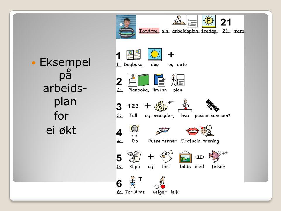 Eksempel på arbeids- plan for ei økt