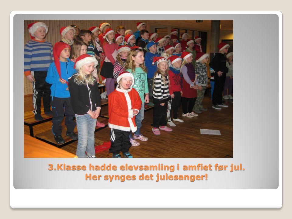 3.Klasse hadde elevsamling i amfiet før jul. Her synges det julesanger!