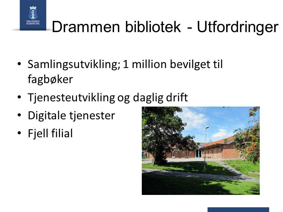 Samlingsutvikling; 1 million bevilget til fagbøker Tjenesteutvikling og daglig drift Digitale tjenester Fjell filial Drammen bibliotek - Utfordringer
