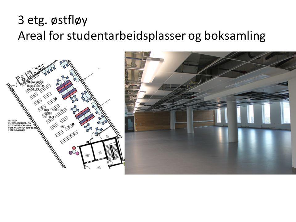 3 etg. østfløy Areal for studentarbeidsplasser og boksamling