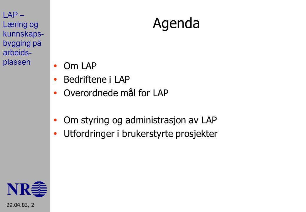 LAP – Læring og kunnskaps- bygging på arbeids- plassen 29.04.03, 2 Agenda  Om LAP  Bedriftene i LAP  Overordnede mål for LAP  Om styring og administrasjon av LAP  Utfordringer i brukerstyrte prosjekter