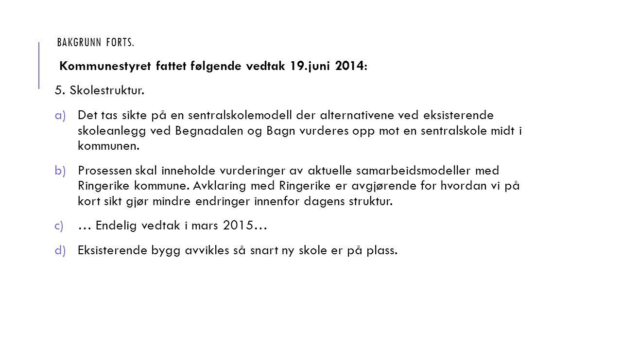 BAKGRUNN FORTS. Kommunestyret fattet følgende vedtak 19.juni 2014: 5.