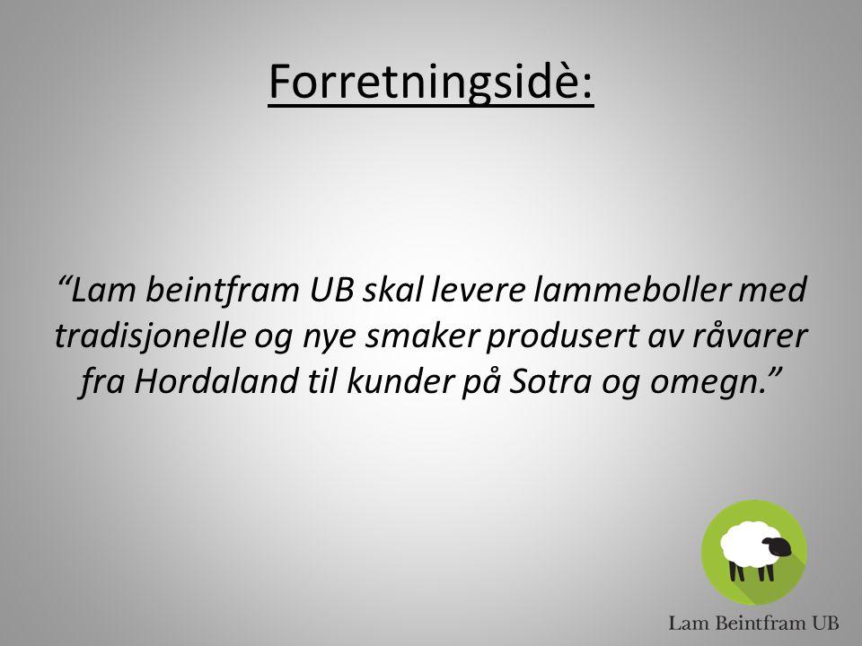 Forretningsidè: Lam beintfram UB skal levere lammeboller med tradisjonelle og nye smaker produsert av råvarer fra Hordaland til kunder på Sotra og omegn.