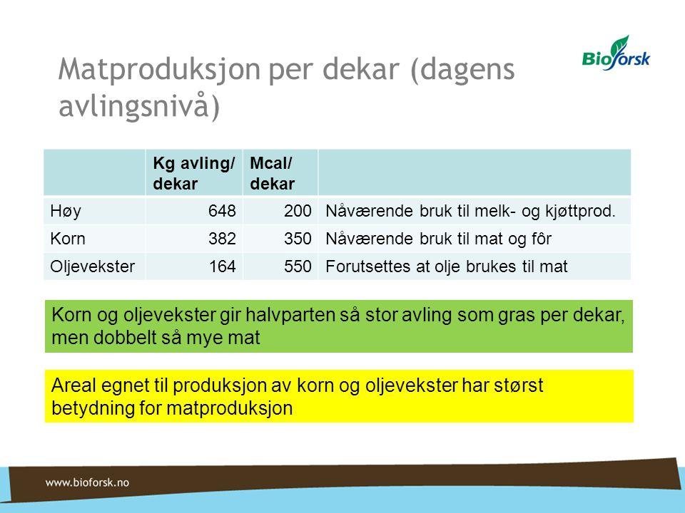 Matproduksjon per dekar (dagens avlingsnivå) Kg avling/ dekar Mcal/ dekar Høy648200Nåværende bruk til melk- og kjøttprod. Korn382350Nåværende bruk til