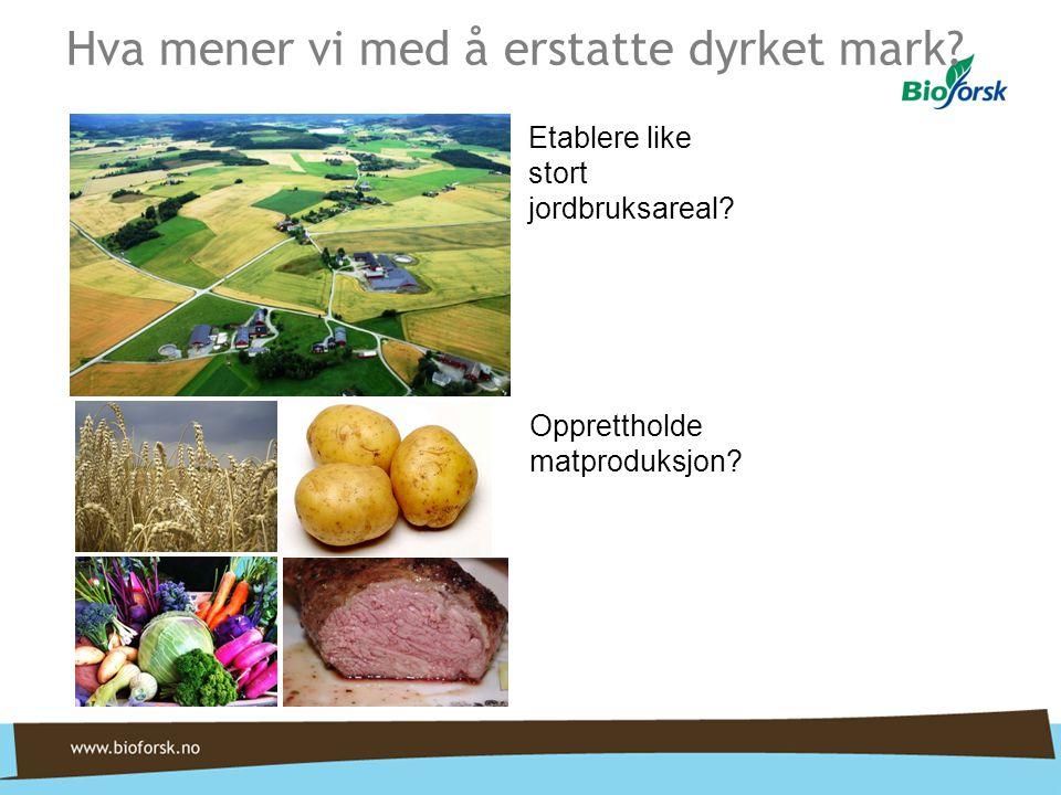 Hva mener vi med å erstatte dyrket mark? Etablere like stort jordbruksareal? Opprettholde matproduksjon?
