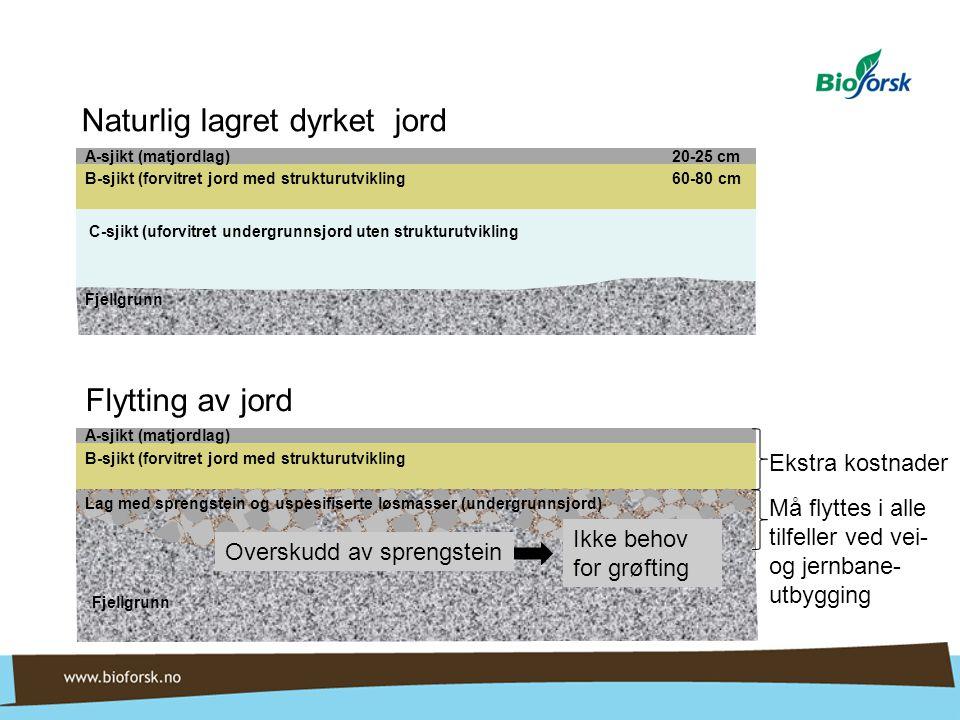 Lag med sprengstein og uspesifiserte løsmasser (undergrunnsjord) A-sjikt (matjordlag) 20-25 cm B-sjikt (forvitret jord med strukturutvikling 60-80 cm