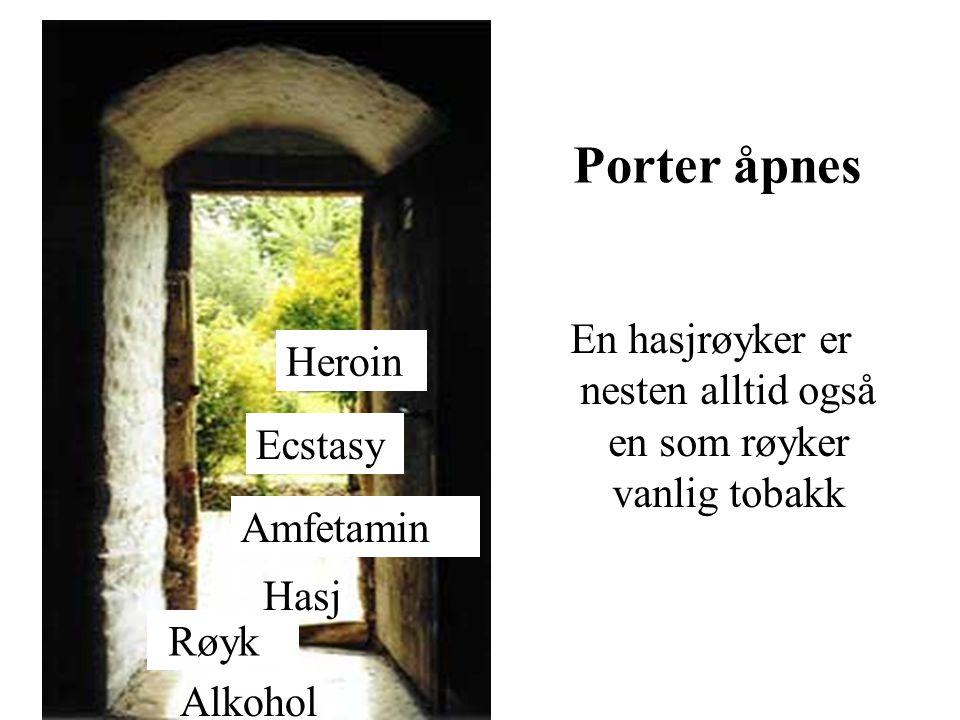 Røyk Alkohol Hasj Amfetamin Ecstasy Heroin Porter åpnes En hasjrøyker er nesten alltid også en som røyker vanlig tobakk