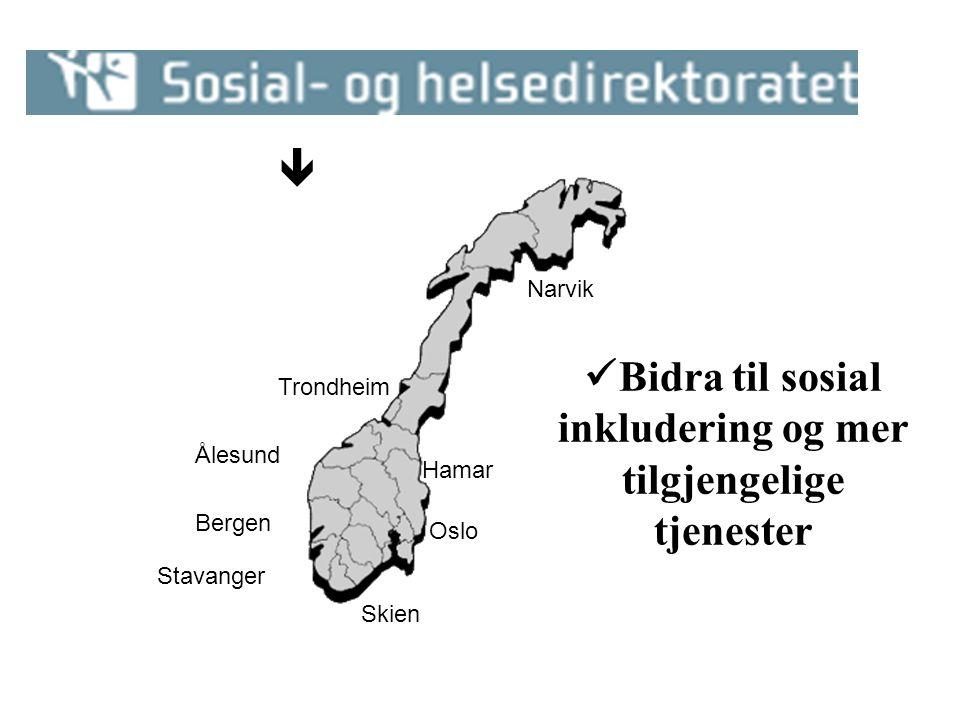 Ålesund Bergen Stavanger Skien Oslo Hamar Trondheim Narvik  Bidra til sosial inkludering og mer tilgjengelige tjenester