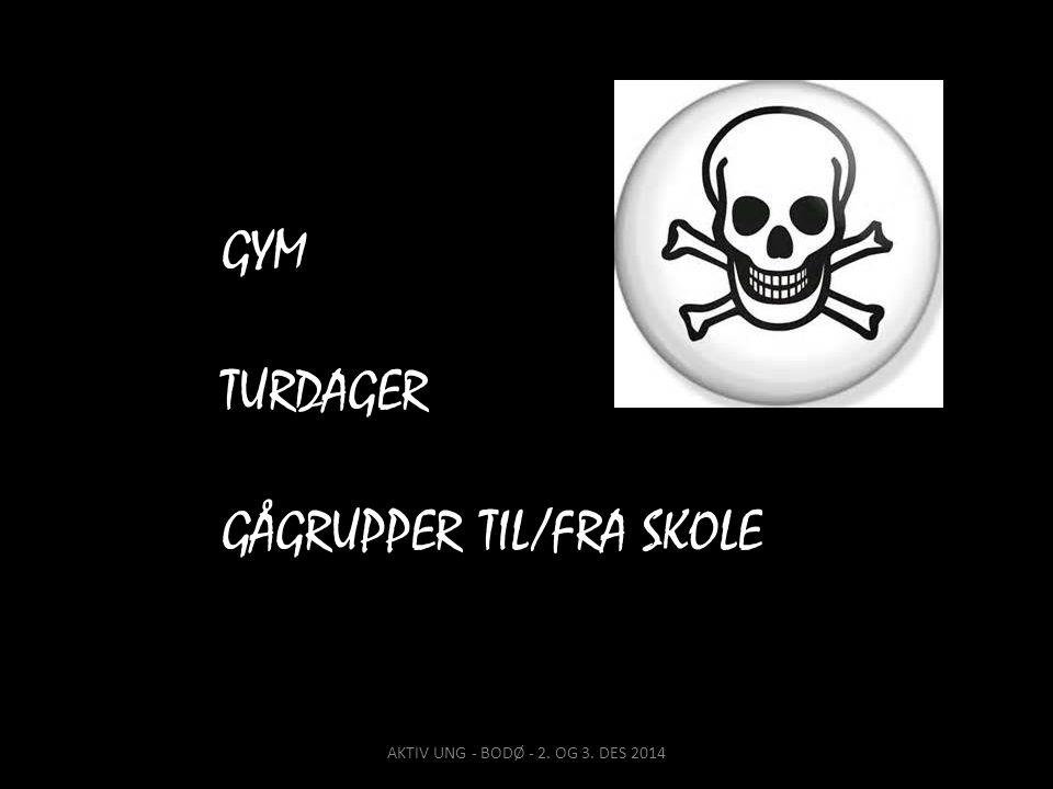 GYM TURDAGER GÅGRUPPER TIL/FRA SKOLE AKTIV UNG - BODØ - 2. OG 3. DES 2014
