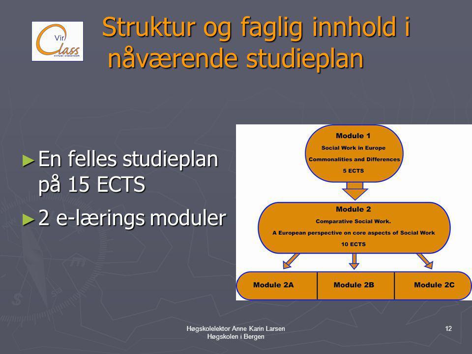 Høgskolelektor Anne Karin Larsen Høgskolen i Bergen 12 Struktur og faglig innhold i nåværende studieplan Struktur og faglig innhold i nåværende studieplan ► En felles studieplan på 15 ECTS ► 2 e-lærings moduler