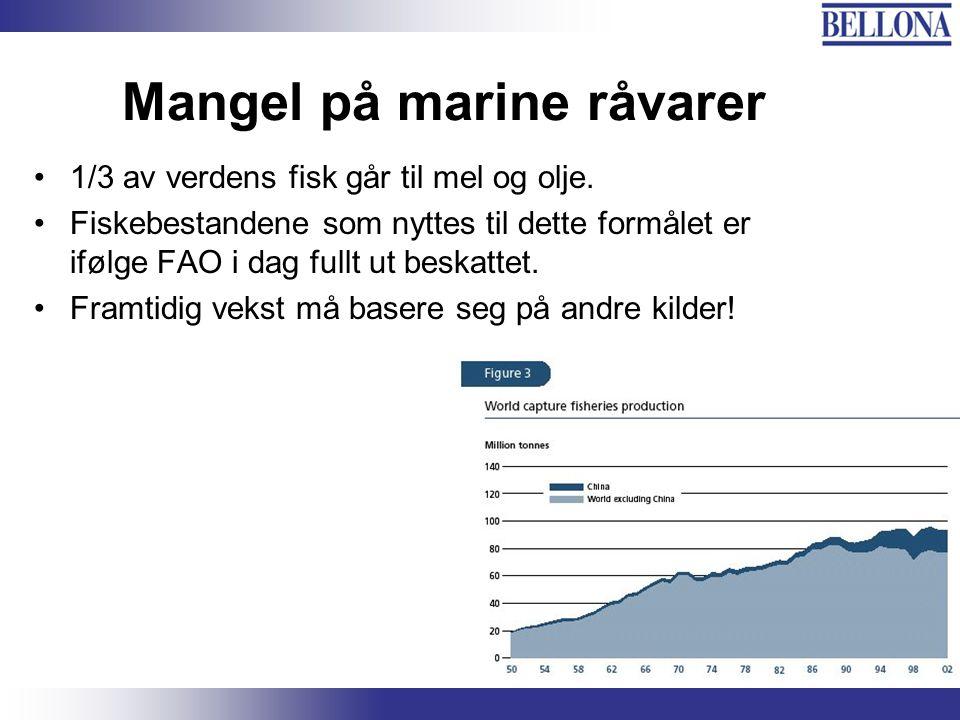 Mangel på marine råvarer 1/3 av verdens fisk går til mel og olje.