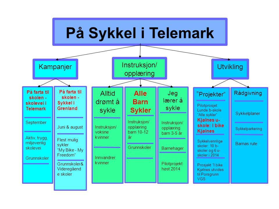På Sykkel i Telemark Kampanjer Instruksjon/ opplæring Utvikling På farta til skolen - skolevei i Telemark September Aktiv, trygg, miljøvenlig skolevei