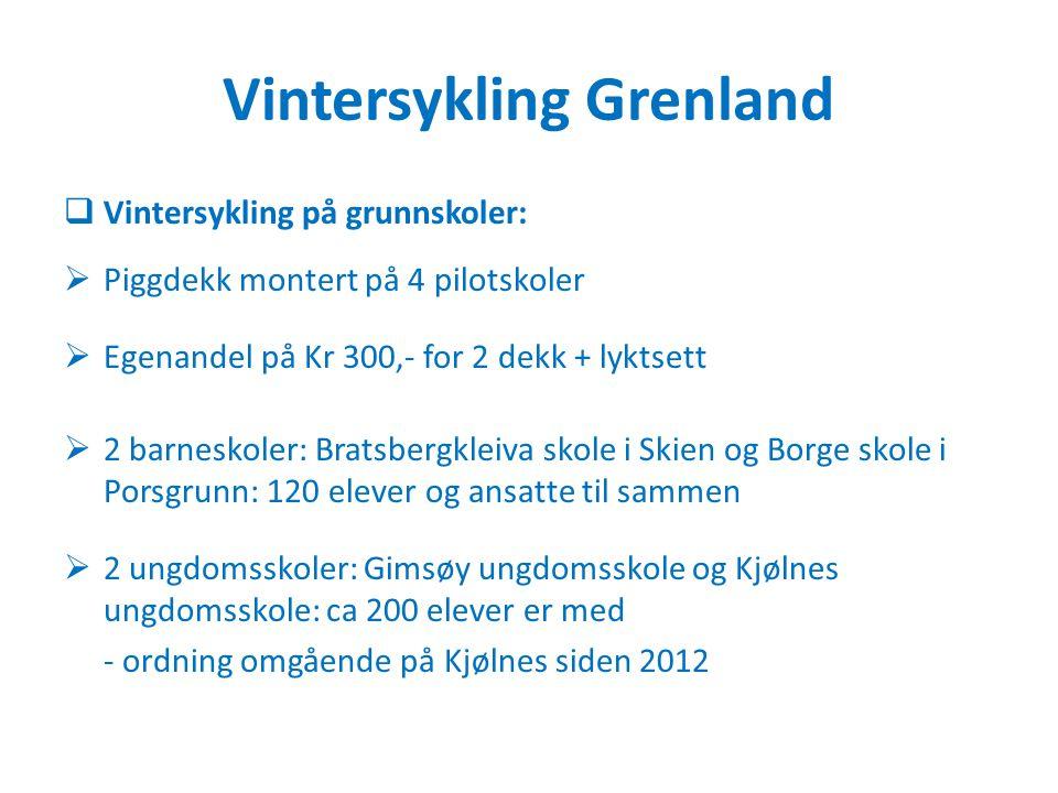 Vintersykling Grenland  Vintersykling på grunnskoler:  Piggdekk montert på 4 pilotskoler  Egenandel på Kr 300,- for 2 dekk + lyktsett  2 barneskol