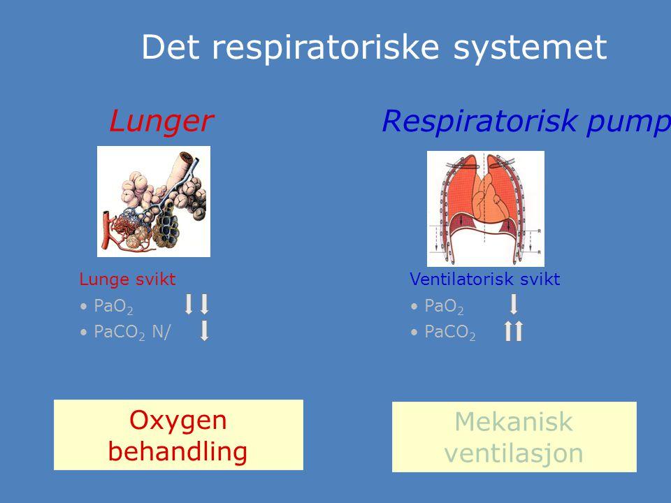 Det respiratoriske systemet Lunger Respiratorisk pumpe Lunge svikt PaO 2 PaCO 2 N/ Ventilatorisk svikt PaO 2 PaCO 2 Oxygen behandling Mekanisk ventila