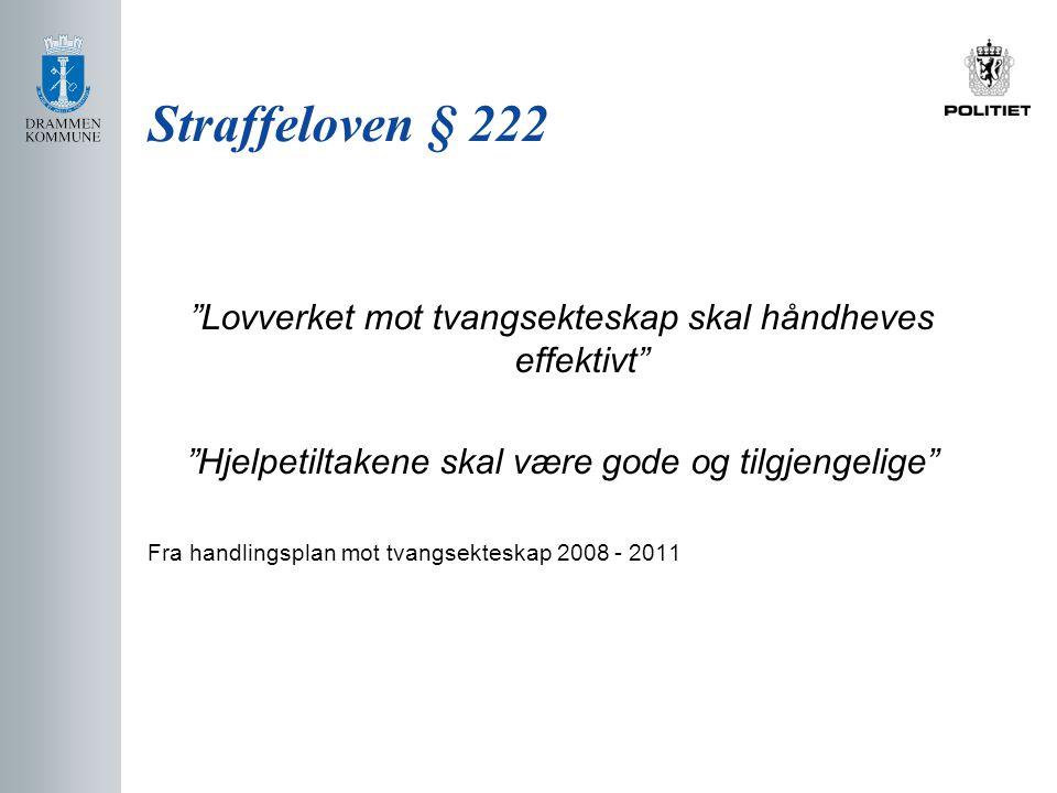 Straffeloven § 222 Lovverket mot tvangsekteskap skal håndheves effektivt Hjelpetiltakene skal være gode og tilgjengelige Fra handlingsplan mot tvangsekteskap 2008 - 2011