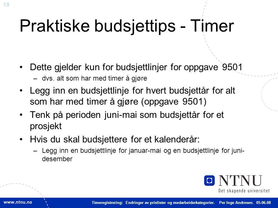 19 Praktiske budsjettips - Timer Dette gjelder kun for budsjettlinjer for oppgave 9501 –dvs.