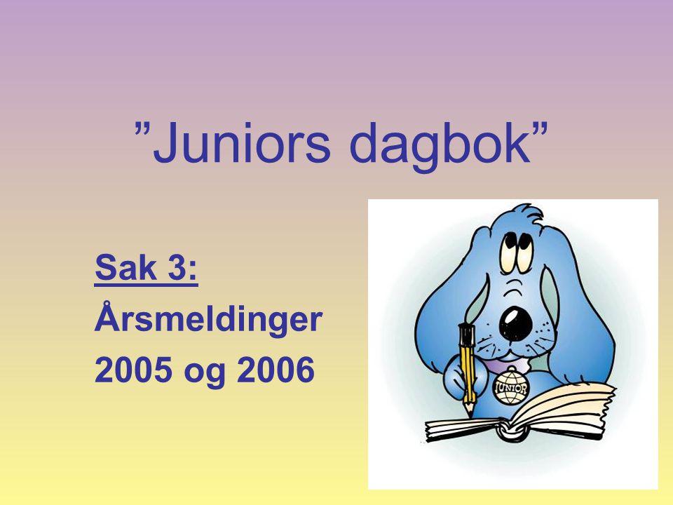 Juniors dagbok Sak 3: Årsmeldinger 2005 og 2006