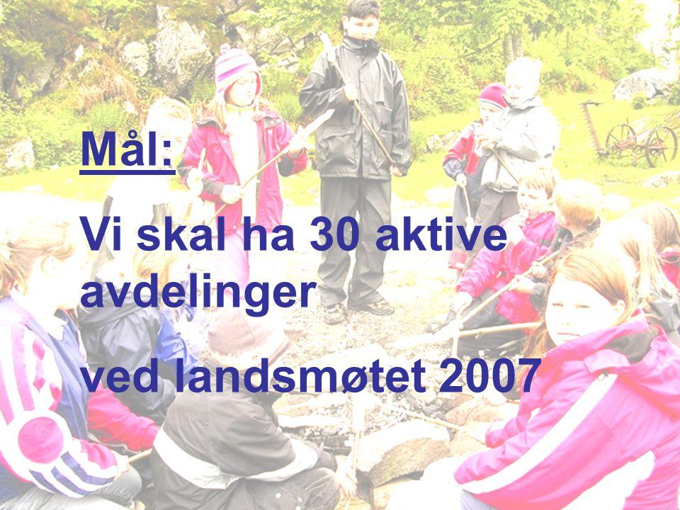 Mål: Vi skal ha 30 aktive avdelinger ved landsmøtet 2007
