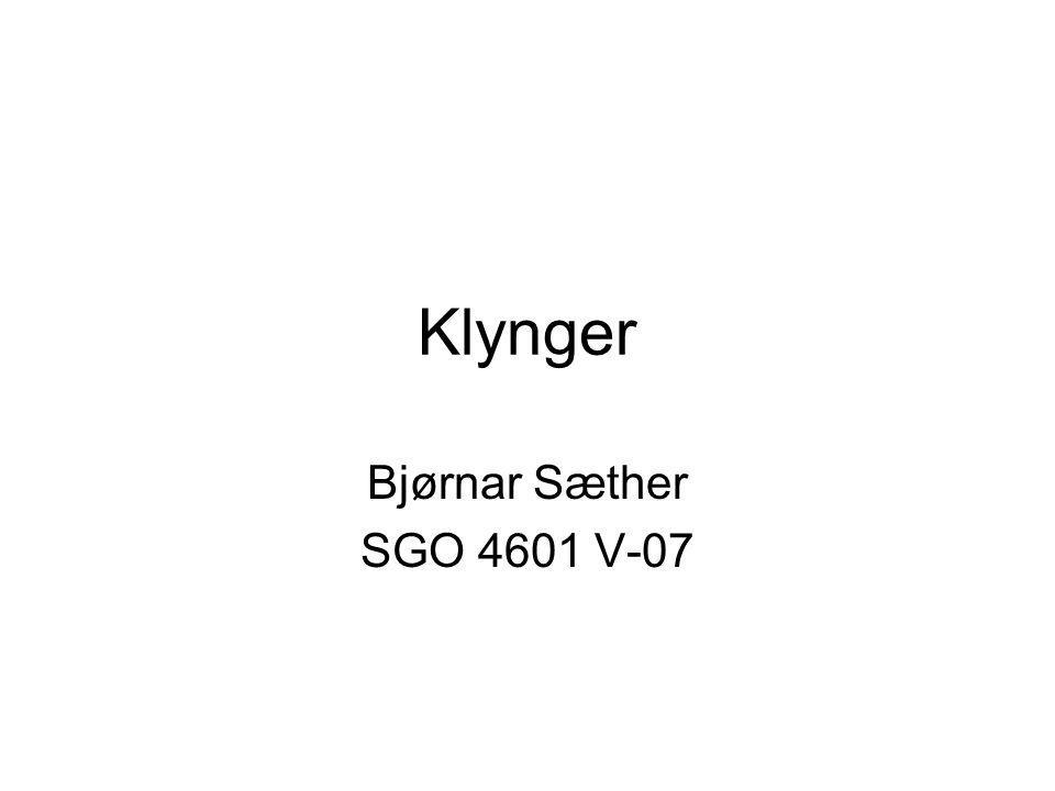 Klynger Bjørnar Sæther SGO 4601 V-07