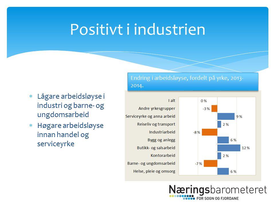 Lågare arbeidsløyse i industri og barne- og ungdomsarbeid  Høgare arbeidsløyse innan handel og serviceyrke Positivt i industrien Endring i arbeidsløyse, fordelt på yrke, 2013- 2014.
