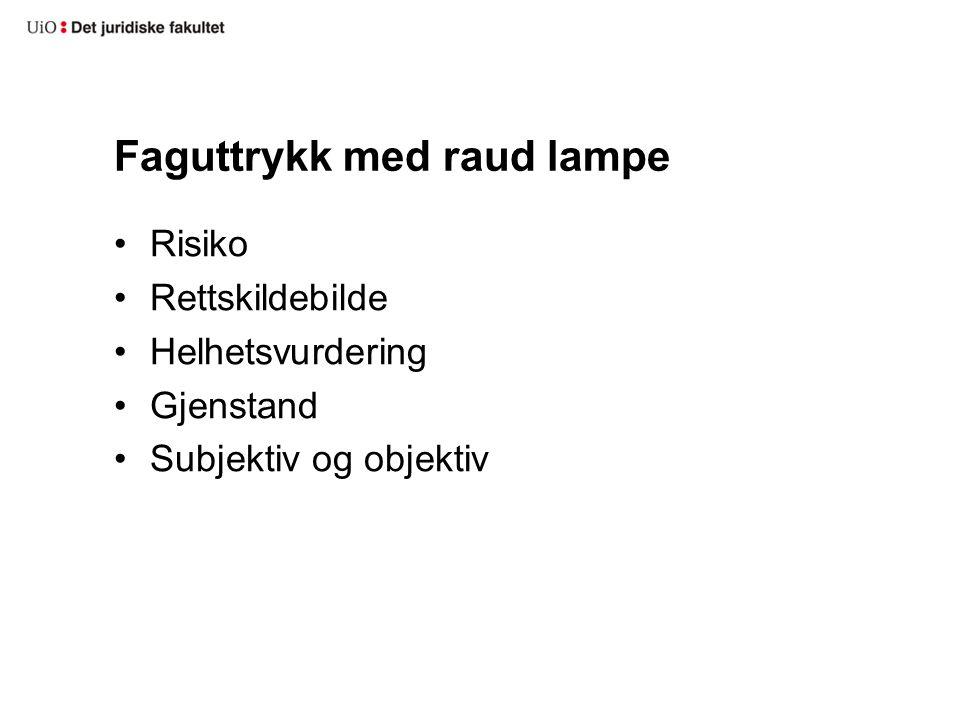 Faguttrykk med raud lampe Risiko Rettskildebilde Helhetsvurdering Gjenstand Subjektiv og objektiv