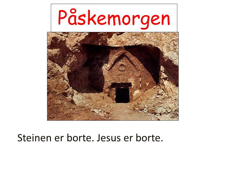 Påskemorgen Steinen er borte. Jesus er borte.