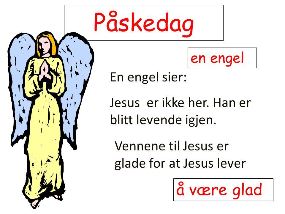 Påskedag En engel sier: Jesus er ikke her. Han er blitt levende igjen. en engel Vennene til Jesus er glade for at Jesus lever å være glad