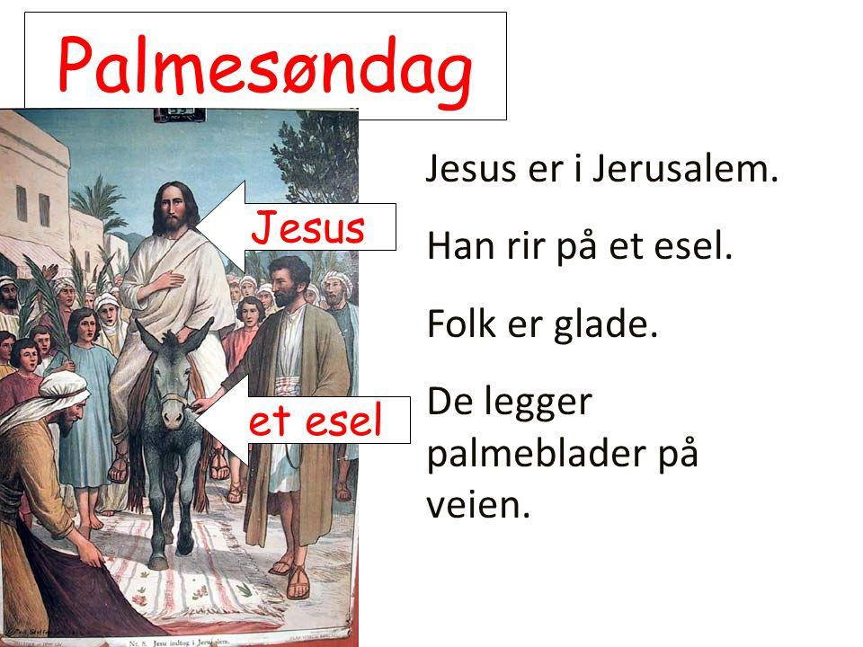 Palmesøndag Jesus er i Jerusalem. Han rir på et esel. Folk er glade. De legger palmeblader på veien. et esel Jesus