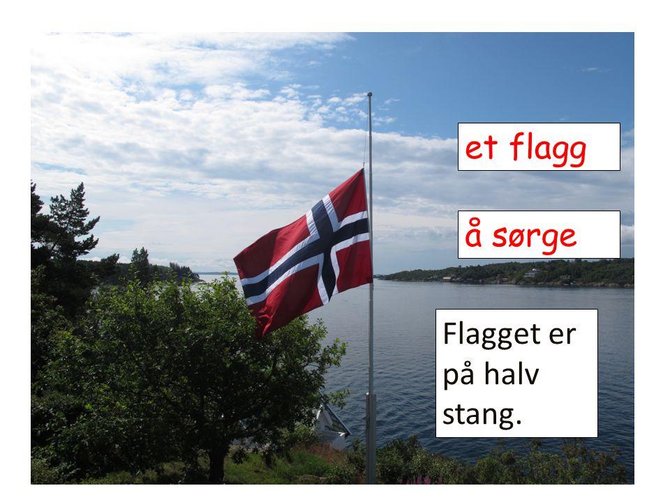 et flagg Flagget er på halv stang. å sørge