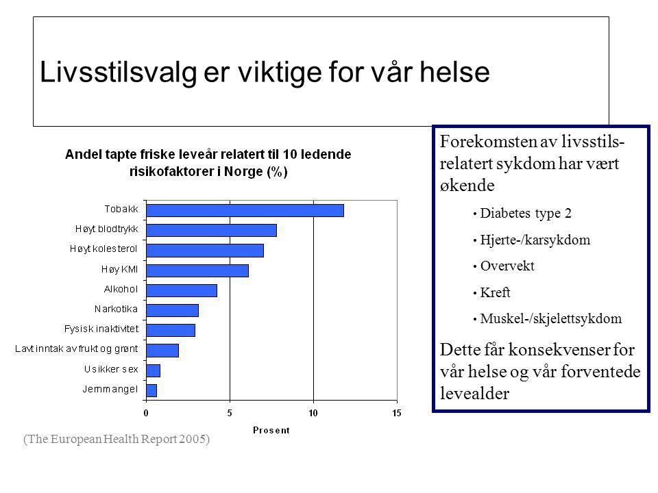 28.03.201516 Vi er godt i gang: God politisk forankring Handlingsplan folkehelsearbeid 2008 – 2011, fylkesplan 11 fagstillinger Ca.