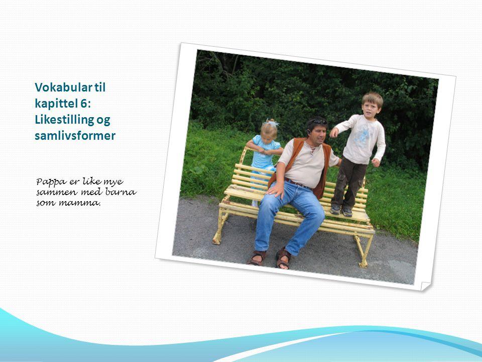 Vokabular til kapittel 6: Likestilling og samlivsformer Pappa er like mye sammen med barna som mamma.