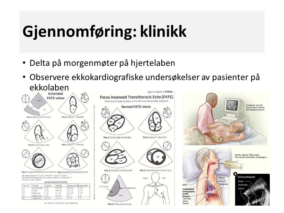 Gjennomføring: klinikk Delta på morgenmøter på hjertelaben Observere ekkokardiografiske undersøkelser av pasienter på ekkolaben