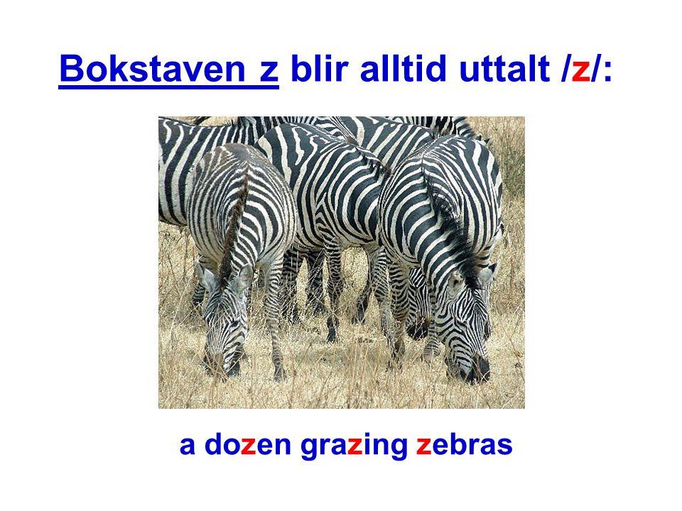 Bokstaven z blir alltid uttalt /z/: a dozen grazing zebras