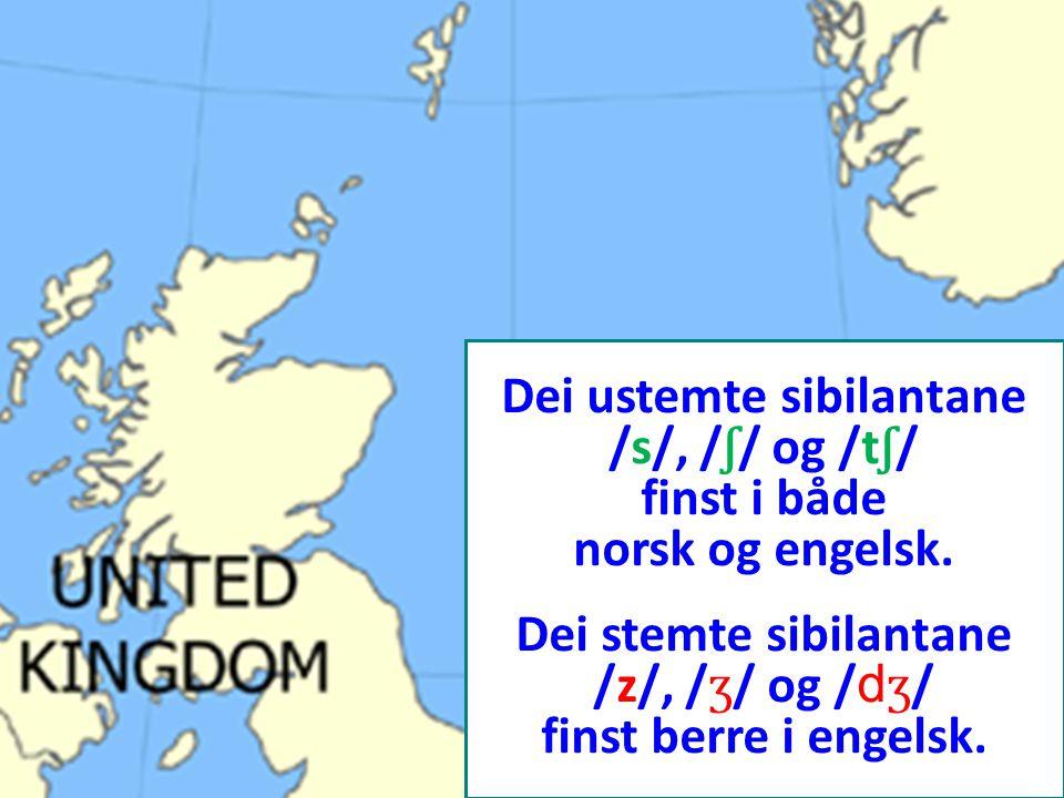 Dei ustemte sibilantane /s/, / ʃ / og /t ʃ / finst i både norsk og engelsk. Dei stemte sibilantane /z/, / ʒ / og / d ʒ / finst berre i engelsk.
