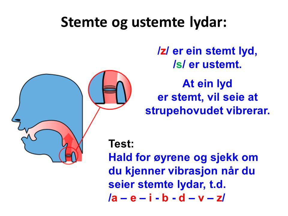 Stemte og ustemte lydar: /z/ er ein stemt lyd, /s/ er ustemt. At ein lyd er stemt, vil seie at strupehovudet vibrerar. Test: Hald for øyrene og sjekk
