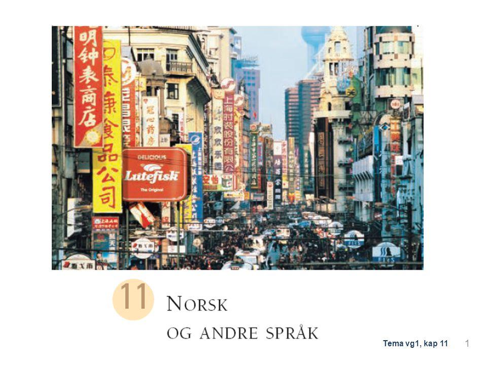 Del 1: Slektskap mellom språk Læreplanen seier at du skal kunne forklare grammatiske særtrekk ved norsk språk, samanlikna med andre språk 2 Tema vg1, kap 11