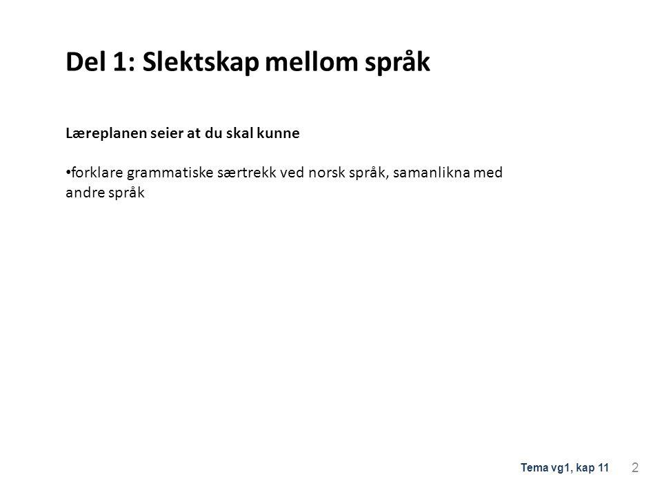 Del 1: Slektskap mellom språk Læreplanen seier at du skal kunne forklare grammatiske særtrekk ved norsk språk, samanlikna med andre språk 2 Tema vg1,
