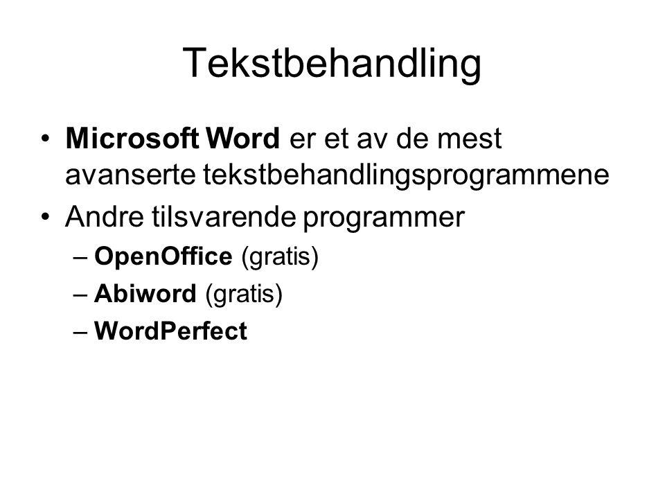 Tekstbehandling Microsoft Word er et av de mest avanserte tekstbehandlingsprogrammene Andre tilsvarende programmer –OpenOffice (gratis) –Abiword (gratis) –WordPerfect