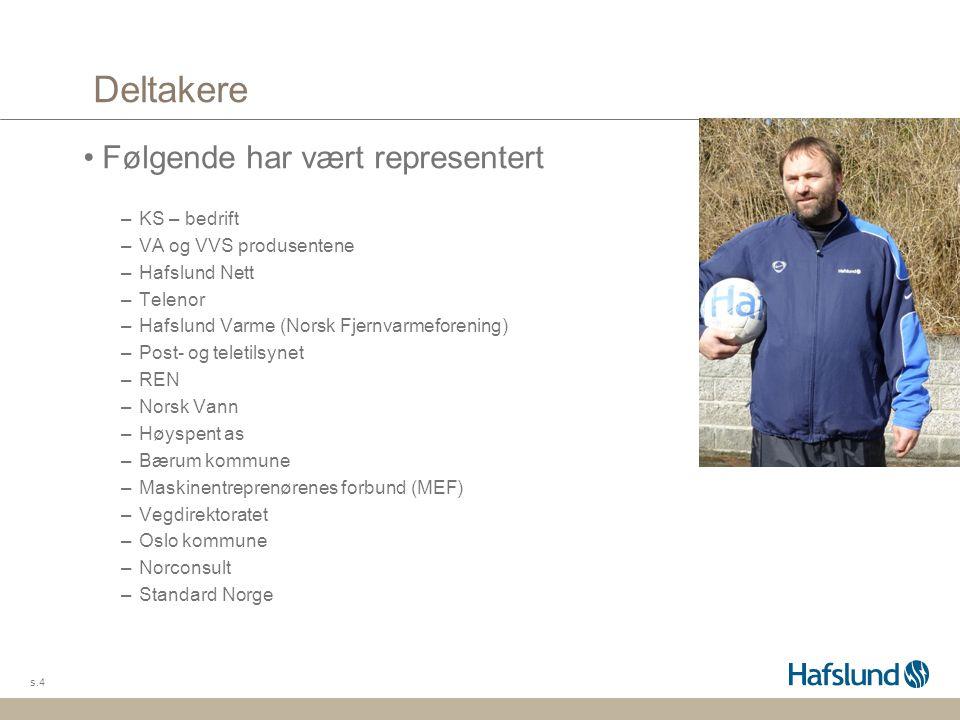 Deltakere Følgende har vært representert –KS – bedrift –VA og VVS produsentene –Hafslund Nett –Telenor –Hafslund Varme (Norsk Fjernvarmeforening) –Pos